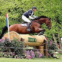 Parkmore Ed (Ridden Internationally by William Fox Pitt